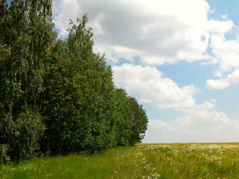 Природа-Северной-Раифы